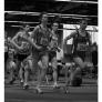 berlin-brandenburgische-hallenmeisterschaften-2009-3000m-lauf-m_bild-005.jpg