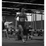 berlin-brandenburgische-hallenmeisterschaften-2009-3000m-lauf-m_bild-015.jpg