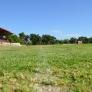 trainingslager-stellenbosch-suedafrika-2013_dsc_6276